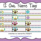 12 Owl Desk Name Tags