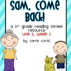 1st grade Reading street: Unit 1, week 1: Sam, Come Back!