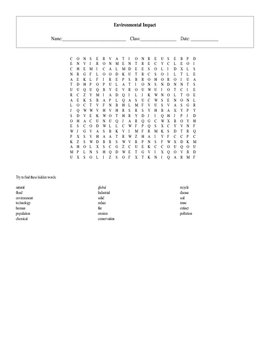 20 Key Term Environmental Impact Standards Based Word Search