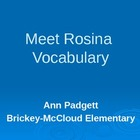 2nd Grade Treasures Vocabulary Powerpoint for Meet Rosina