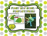 3-D Leaf Model to Teach Photosynthesis (Color and B&W)