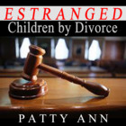 30 Years to 30 Days: Estranged Bipolar Divorce Lessons, Condensed