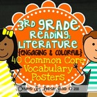 3rd Grade Reading Vocabulary Posters: Reading Literature