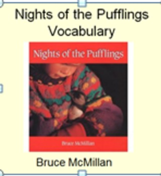 3rd Language Arts HM 4.1 Nights of the Pufflings Vocab PPT