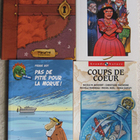 4 NEW FRENCH BOOKS fairy tale princesse a enlever+seal hun