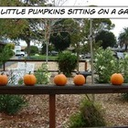 5 Little Pumpkins Song Cards