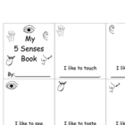 5 Senses Books