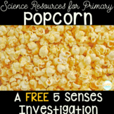 5 Senses - Popcorn Investigation FREEBIE