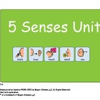 5 Senses Unit - For Children with Autism or ECE Classroom!