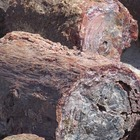 50+ Photographs for Commercial Use~Petrified Forest~Painte