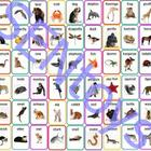 54 Animals Photo Flash Cards. Autism Aspergers ABA Resourc
