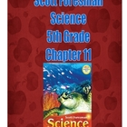 5th Grade Science Scott Foresman Ch. 11