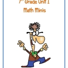 7th Grade Unit I Math Minis