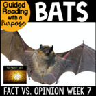 A 'Batty' Week of Fun!
