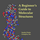 A Beginner's Guide to Molecular Structures