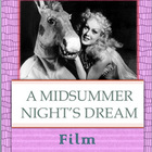 A Midsummer Night&#039;s Dream: Film Comparison Notes &amp; Essay Prompt