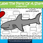 A+ Shark  Labels