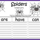 A+ Spiders: Graphic Organizers