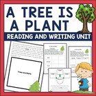 A Tree is a Plant by Clyde Bulla Guided Reading