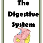 Activities and Games for the Digestive System