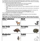 Adaptations and Natural Selection HW/Worksheet