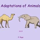 Adaptations of Animals - Smartboard Lesson