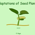 Adaptations of Seed Plants - Smartboard Lesson