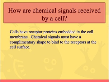 Advanced Placement (AP) Biology Review PPT: Cell Communication