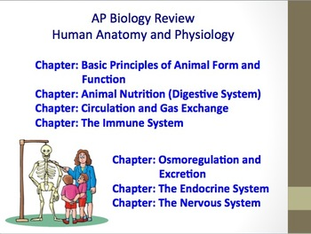 Advanced Placement (AP) Biology Review PPT: Human Body Systems