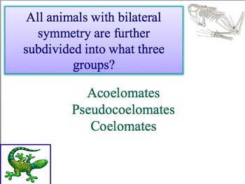 Advanced Placement (AP) Biology Review Powerpoint: Intro t