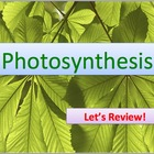 Advanced Placement (AP) Biology Review Powerpoint: Photosynthesis