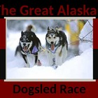 Alaskan Iditarod Dogsled race Primary PowerPoint Lesson