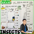 Insects All About Me Printable