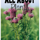 All About Plants Unit