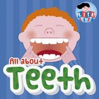 All about teeth fold and learn