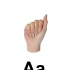 Alphabet Sign Language: Signing your ABC's through Picture