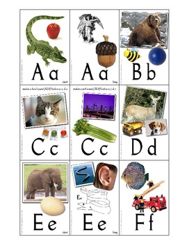 Alphabet and Basic Phonics Flash Cards w/ Box