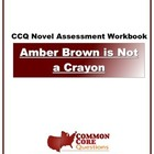 Amber Brown Is Not A Crayon - Common Core Aligned Assessme