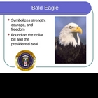 American Symbols Powerpoint