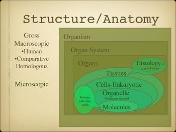Anatomy & Physiology Module 1-Body Systems and Review of Biology