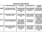 Anatomy Project Rubric