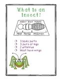 Anchor Chart for Insects