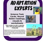 Animal Adaptation Experts Science Round Robin-readings, vi