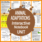Animal Adaptations Lesson and Full Color Game