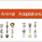 Animal Adaptations Powerpoint with cool graphics