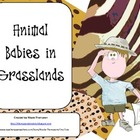 Animal Babies in Grasslands Teacher&#039;s Resource/Hand out/Ac
