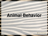 Animal Behavior PowerPoint Presentation Lesson Plan
