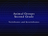Animal Group Classification PowerPoint
