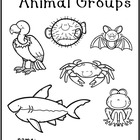 Animal Groups Printable Book