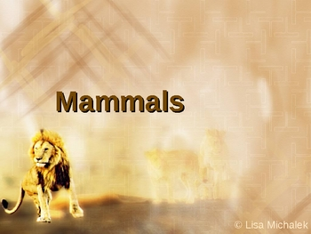 Animal Kingdom Mammals PowerPoint Presentation Lesson Plan